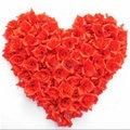 100 unids/lote lindo mini caramelo de color rosa de Flores de Seda Artificial Heads banquete de Boda peluquería pétalos de rosa para bodas FW112