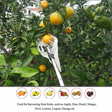 Berserker Garden Tools Metal Fruit Picker Convenient Fabric Orchard Gardening Apple Peach Tree Picking