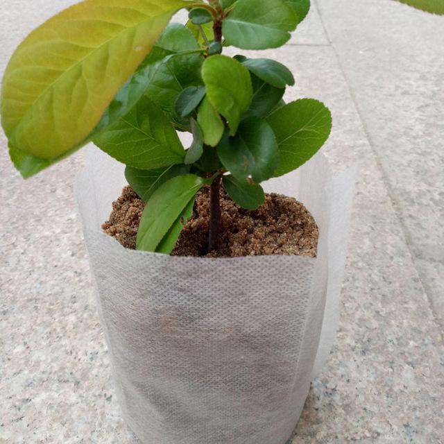 Disposable Non Woven Planting Bag