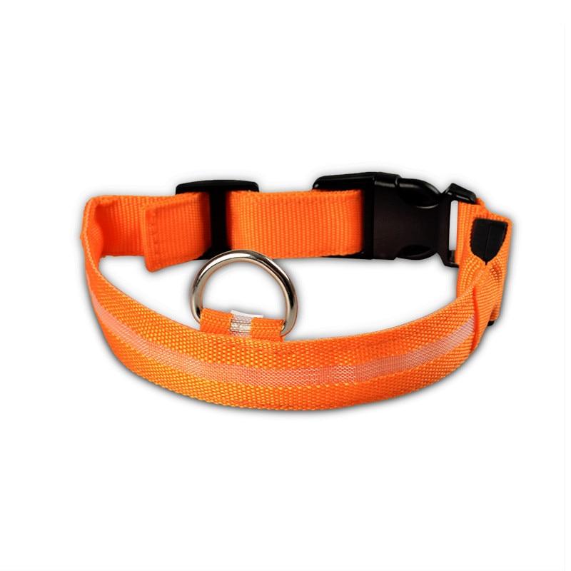 Collier lumineux de protection pour chien
