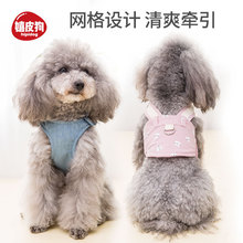 Breathable Fashion Dog Harness and Leash Set Teddy Vest Pet Walking Harnesses Puppy Collar for Small