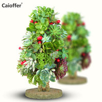 Caioffer DIY Handmade Bonsai Little Tree Plant Succulent Not Included Balcony Garden Decoration Christmas Tree Cone Moss Topiary
