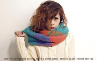 2013 Neckwear Winter Knitted Scarf Female Pullover Warm Acrylic Long Shawls Knitted Crochet Scarves Women Winter
