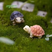 Бриофит микро пейзаж мясистые растения два цвета маленькие Черепашки Черепаховые раковины Diy украшения домашний декор Миниатюрный Сад