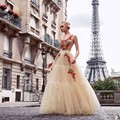 Nude Tulle Champagne Red Evening Dresses Long Sleeve Delicate Floral Embroidery Prom Gowns Long Sleeves Puffy Dress To Party