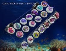 SPS phyto plus кораллы фрагмент стойка кронштейн Мини nano сильный магнит фиксировать аквариум Наклонный самолет