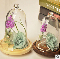 Creative Landscape Glass Cover New DIY The Glass Vase Micro Landscape Special Gift Furnishing Articles