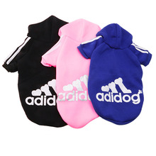 """Absolutely lovely """"Adidog"""" (Adidas) sports Sphynx Cat outfit"""