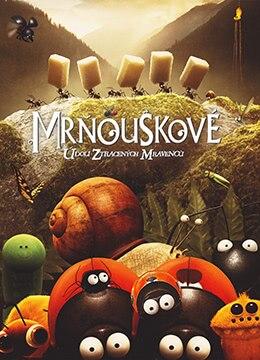 《昆虫总动员》2013年法国,比利时动画,冒险电影在线观看