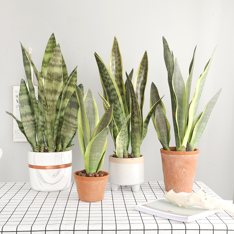 3pcs/lot Artificial Plants Sansevieria Branch For Bonsai Decoration Fake Plastic Tiger Piran Leaves Plants Home Garden Decors