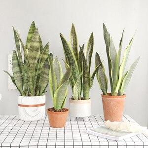 Lote de 3 unidades de plantas artificiales, rama Sansevieria para decoración de bonsái, tigre de plástico falso, hojas de Piran, plantas, decoración de jardín y hogar