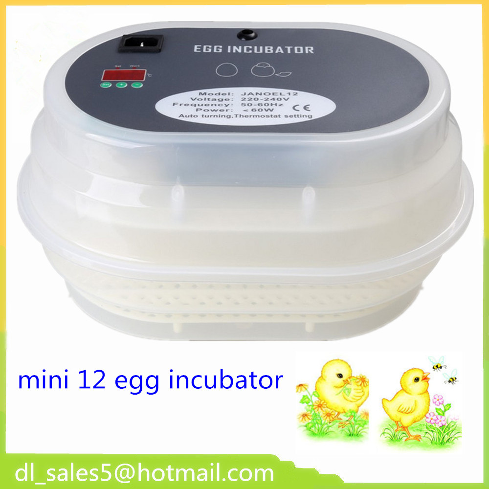 Cheap Price China  Small Brooder 12 Mini Hatchery Egg Incubator Hatcher for Chicken Duck Bird Pigeon Quail