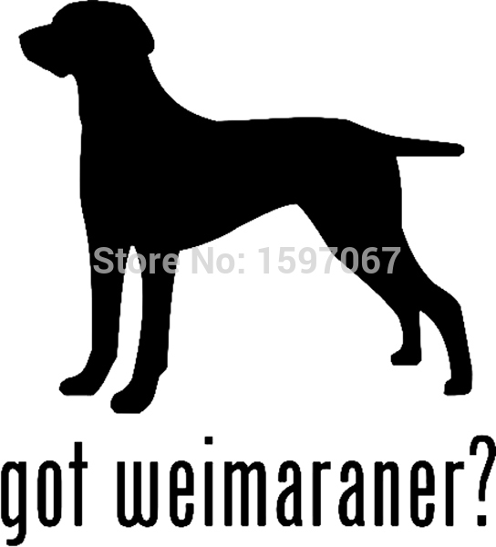 Popular Hunting Dog DecalsBuy Cheap Hunting Dog Decals Lots From - Sporting dog decals