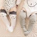 Esquilo Raindrop Aquecedores Do Pé Do Bebê de Algodão Crianças Meias para Meninos Meninas 2-6 Anos 1 Par