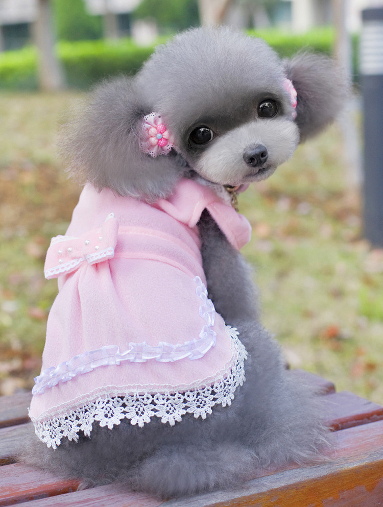 Aliexpress.com Comprar Lujo lindo perro de mascota Tutu partido del  vestido falda de encaje de peluche gato princesa ropa del arco nudo vestido  de