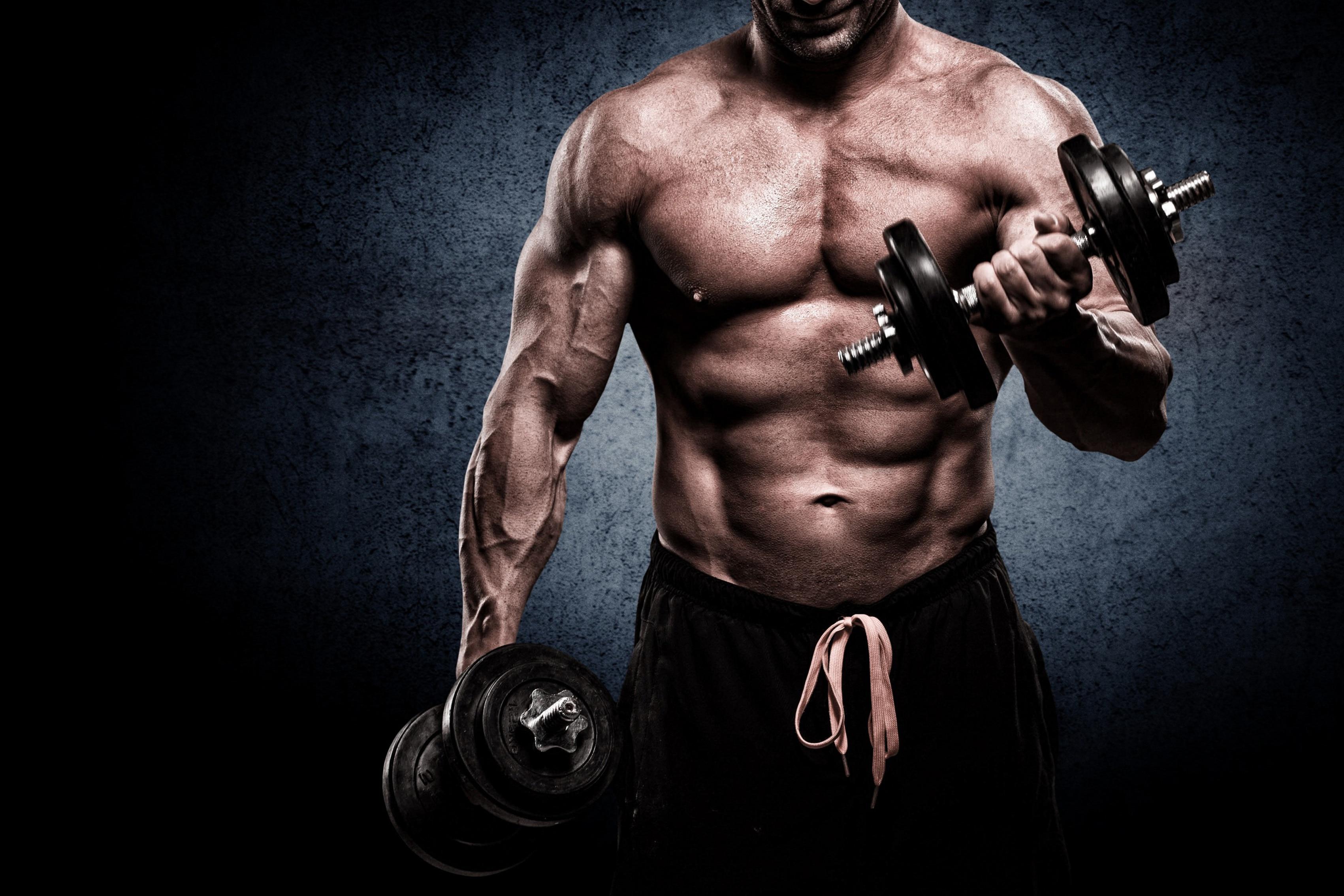 Barbell Gym Muscle Man Bodybuilder Living Room Home Art -4439