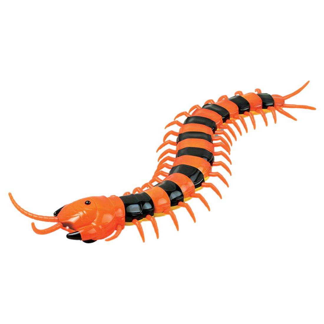 New Infrared RC Remote Control Centipede Scolopendra Creepy-crawly Kids Toy Gift,Orange&BlackNew Infrared RC Remote Control Centipede Scolopendra Creepy-crawly Kids Toy Gift,Orange&Black