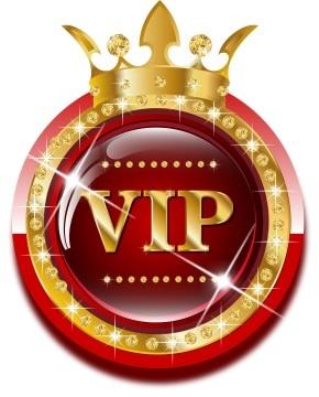 VIP pour Liquide fondation 4.16