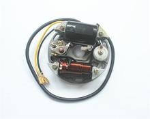 פוך גלגל מכון סליל 6V 17 W Zundapp Kreidler הרקולס עבור KTM הצתה אלטרנטור עבור פוך גלגל מכון סליל 17 w