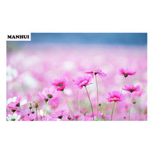 Diamond Embroidery 3D DIY Diamond, Pink Flower Image Diamond Painting Cross Stitch Embroidery BSF129(China)