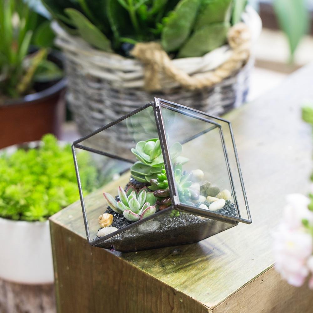 Փոքր DIY երկրաչափական խորանարդի ապակե - Այգու պարագաներ - Լուսանկար 5