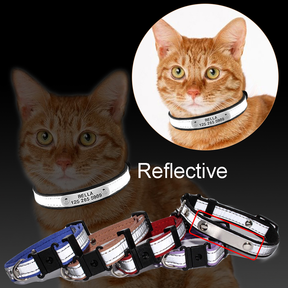 3 en 1 Grabado Cat Collar Reflective Kitten ID Tag Número de - Productos animales