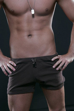 New  mens net yarn briefs mesh transparent sexy U - convex low waist small flat Angle underwear
