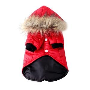 Image 4 - Pawstrip XS XL 暖かい小型犬服冬の犬のコートジャケット子犬チワワためヨーキー犬冬服ペット服