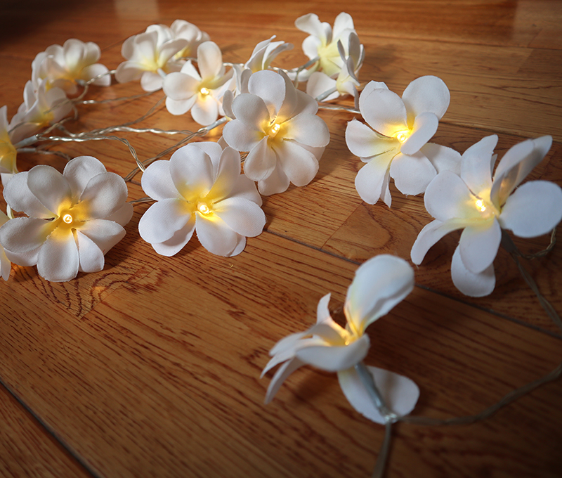 3M 24Bulbs Classic White Frangipani flower led string Fairy lights for Patio Wedding Party and Home Decor Christmas Decoration in LED String from Lights Lighting