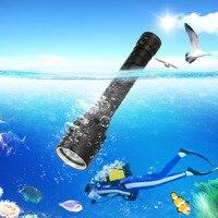 UV 395nm 3x XPE LED Unterwasser 100M Scuba Tauchen Taschenlampe Laterne Lampe + 2x3000mAh 18650 batterie + Dual Ladegerät|LED-Taschenlampen|Licht & Beleuchtung -
