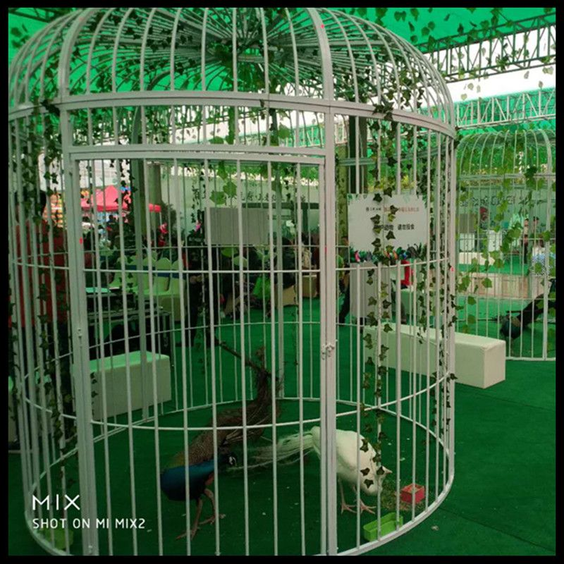 Super grande cage à oiseaux en fer forgé paon décoration de mariage personnalisée accessoires cage à oiseaux affichage extérieur grande cage - 2
