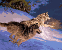 Wolves No Frame Wolf Animals DIY Painting By Numbers Paint On Canvas Acrylic Coloring Painitng By