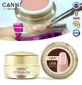 1 unid 15 ml canni natural nude color pastel gel ultravioleta camuflaje UV Gel Extremidades Falsas de Acrílico para el Arte Del Clavo de Extensión 15 Colores
