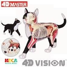 Черный и белый Кот 4d мастер головоломки сборки игрушки животных биология орган анатомическая модель для медиков обучения модель