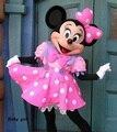 2016 Minnie Traje de La Mascota Rosada de Minnie Mouse Traje de La Mascota Del Envío Libre 10 estilos