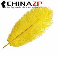 ÇIN Fabrika Boyutu 45 ~ 50 cm (18 ~ 20 inç) 100 adet/grup Moda Boyalı Sarı Devekuşu Darb Tüyler
