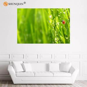 Красивая трава Луг роса постер на заказ атласный постер печать ткань стены постер печать из шелковой ткани с принтом постер 18-1-16