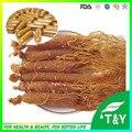 Extracto de ginseng rojo/polvo de extracto de panax ginseng Cápsula 500 mg * 1000 unids