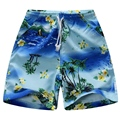 beach shorts board shorts for boy  Polyester 100% 100 cm to 150 cm BSG16