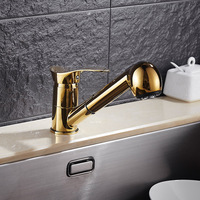 Titanium Gold Pull Out Kitchen Faucet Mixer Wash Basin Bathroom Sink Tap Faucets Hot and Cold
