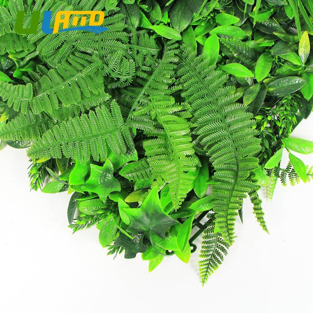 Indoor Garten Anlegen Geeignete Pflanzen