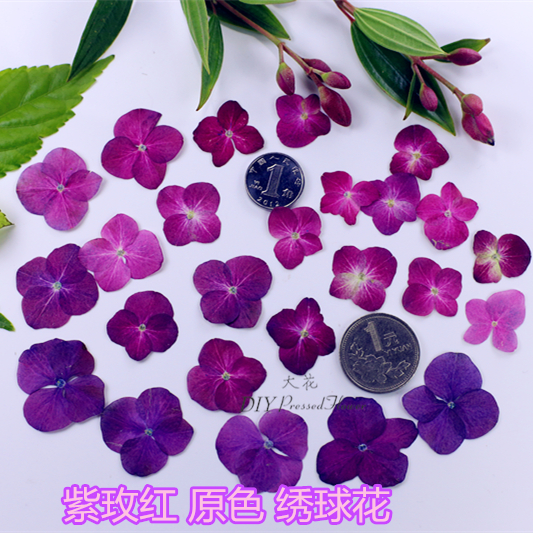 120pcs Freeshipping Pressed Flower Dried Natural Flowers Diy Materials Color Purple Rose Hydrangea