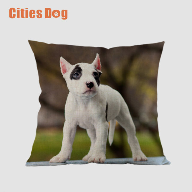 Animal Dog Square Pillowcase Linen American Staffordshire Terrier Extraordinary Decorative Pillows Dogs