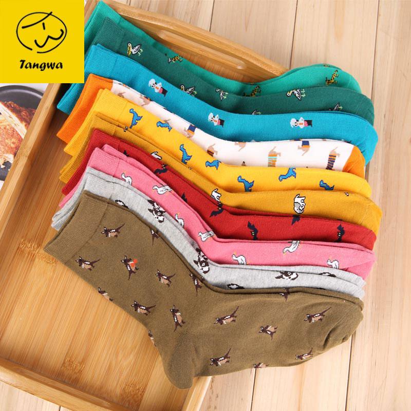 Tangwa Store man socks 5 pairs cotton cartoon 10 color animal dinosaur brand short perfect elastic 2017 fashion Free Shipping