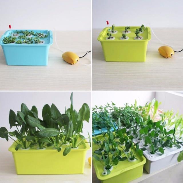Kit de culture de semis de plantes 220V/110V | 1 lot de systèmes hydroponiques, pots de pépinière, semis de semis, stockage de plantes, 6 trous