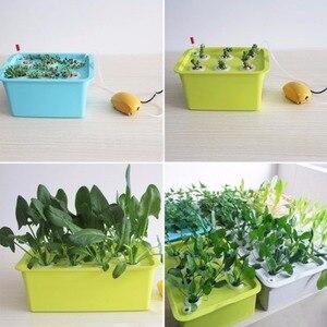 Image 5 - 220V/110V rośliny systemy hydroponiczne witryny 6 otworów doniczki przedszkolne bezglebowe warzywa uprawa sadzonka rosnące pudełko z pompą powietrza