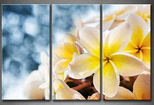 3 Pieces Picture Painting Wall Art Room Decor Print Poster Flower series Wall Pictures for Living Room Canvas Painting цена