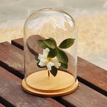 New Glass Dome with Wood Base Home Decor wedding decoration flower vase gift vase