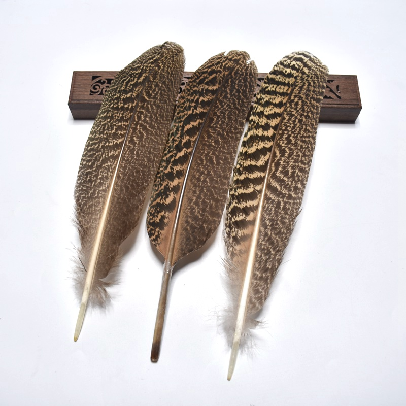 Wholesale10Pcs high quality25-30cm/10-12inch natural owl eagle feathers Pheasant feather DIY Jewelry decoration indian headdress