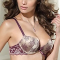 Women Embroidery Lingerie Underwire Push-Up Thin Padded Bra Set Brassiere + Briefs Floral Print Bras Bra Suits 6475